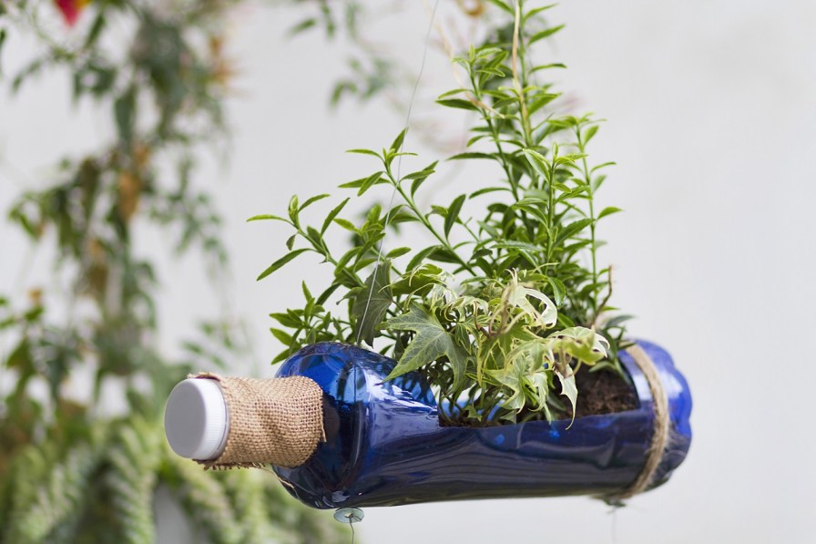 Planter from a Plastic Bottle